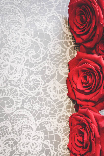 Blooming red roses in white floral lace background valentines day or picture id1125752493?b=1&k=6&m=1125752493&s=612x612&w=0&h=g3wqbnjxjq2vqhciocjcpsn csbbtflgp2v0xpx7zye=