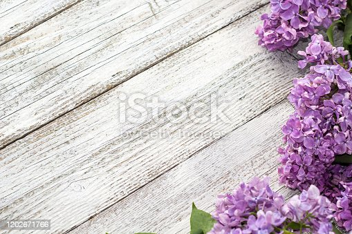 blooming spring lilac flowers on a white wooden background. Top view with copyspace