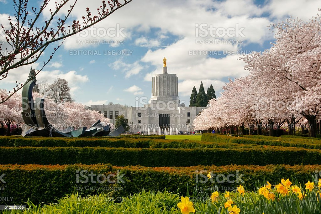 Blooming trees near Oregon State Capitol stock photo