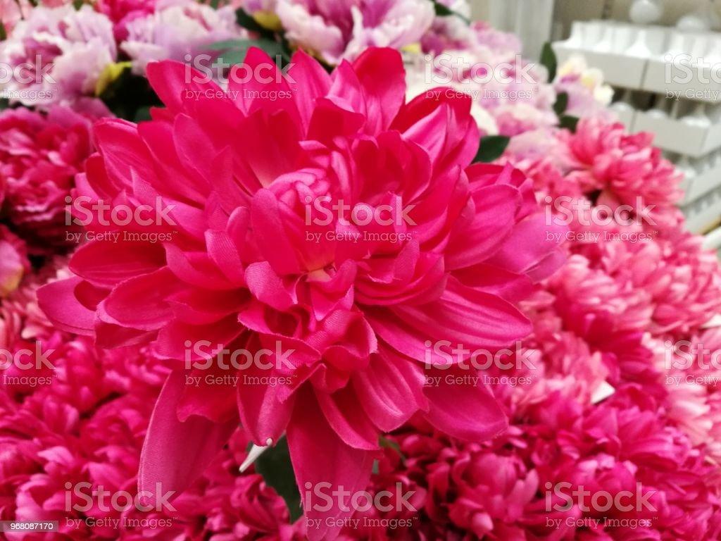 Blossom flower bouquet background set of beautiful flower pattern blossom flower bouquet background set of beautiful flower pattern bunch of flower in valentine izmirmasajfo