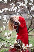 blossom magnolia garden