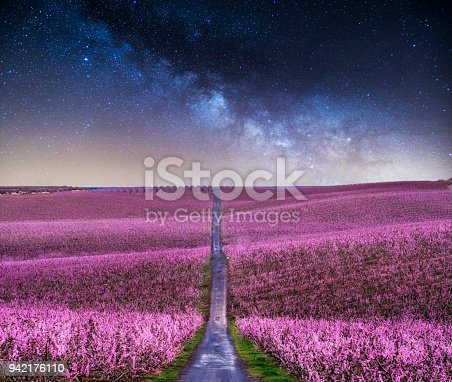 blossoming peach tree landscape at night with milky way