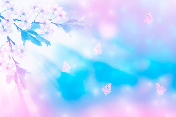 Blossoming branch cherry picture id1025912504?b=1&k=6&m=1025912504&s=612x612&w=0&h=r3q3szgfhnaml8fb5zzhbvrzykawziv azihmxoo7iw=