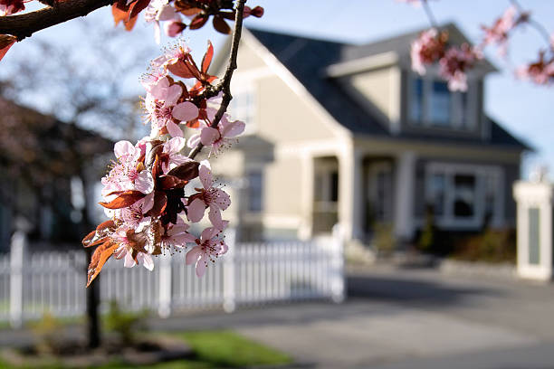 blossoming neighborhood - house with flowers stock photos and pictures