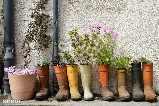 Flowers planted in gumboots