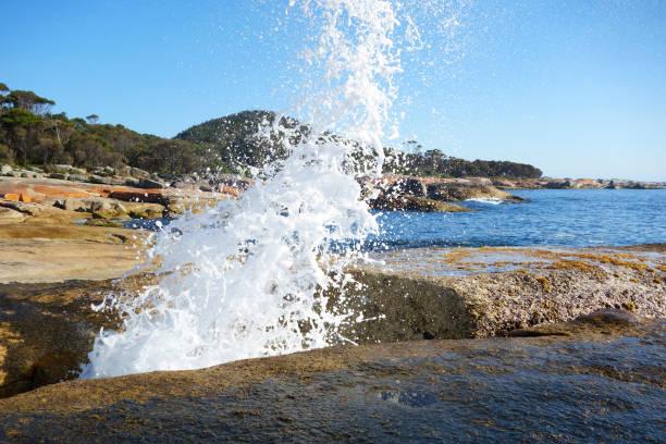Blowhole at Bicheno beach, Tasmania, Australia stock photo