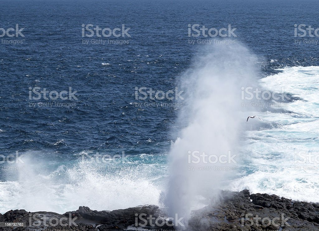 Blowhole at Suarez Point on Galapagos stock photo