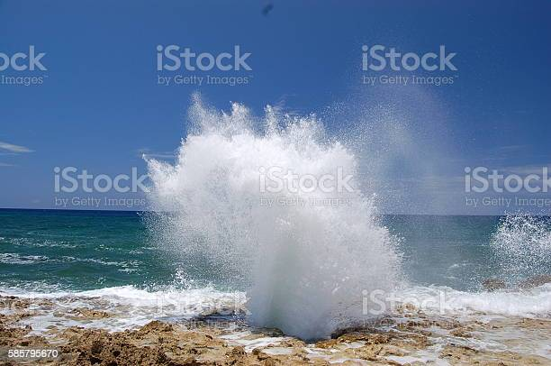 Blowhole Stock Photo - Download Image Now