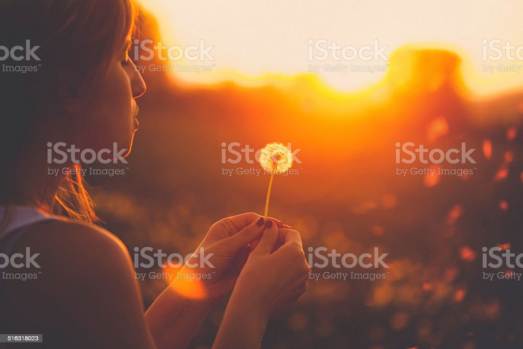 Blowing a dandelion royalty-free stock photo