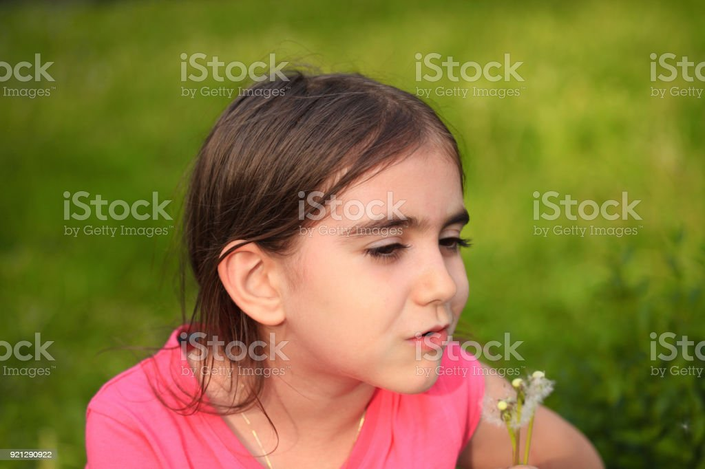 Blowing a dandelion stock photo