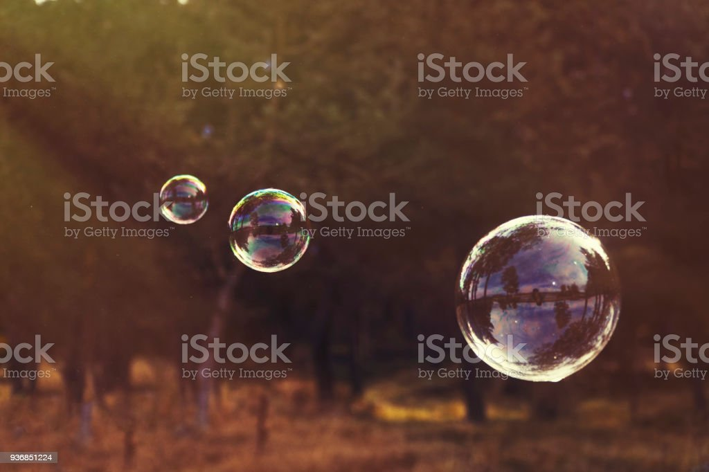 Blowing bubbles in nature stock photo