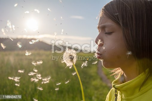 Young boy blowing dendelion seeds