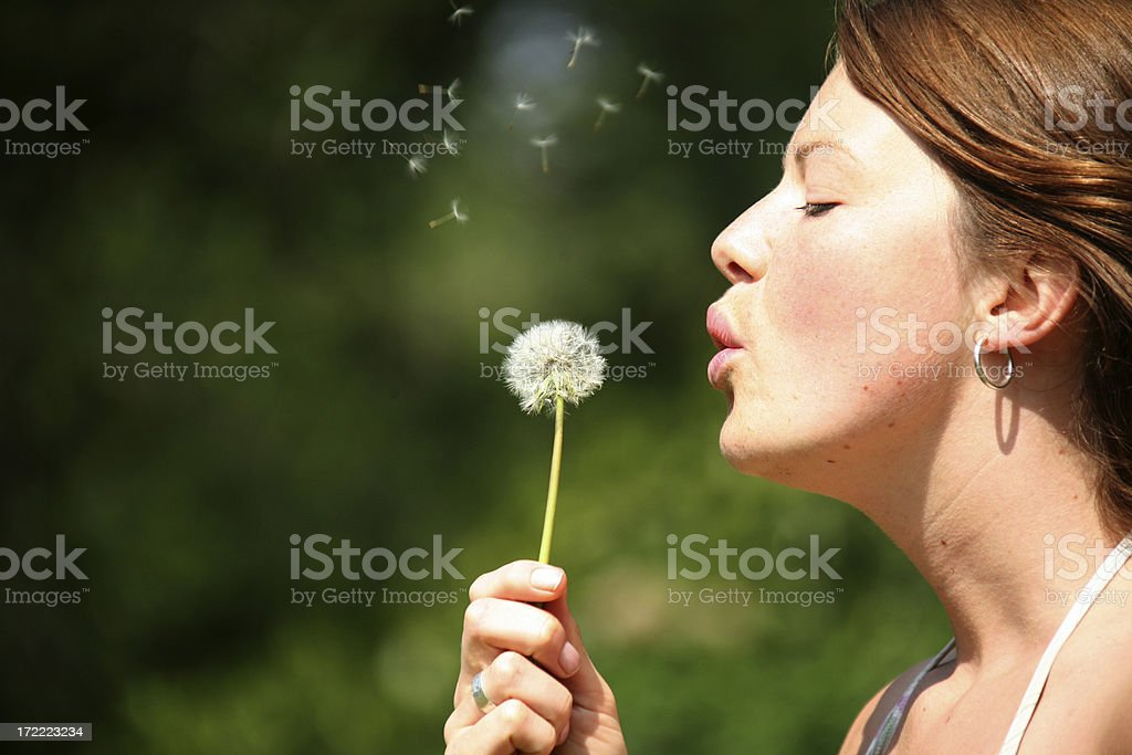 blowing flowers royalty-free stock photo