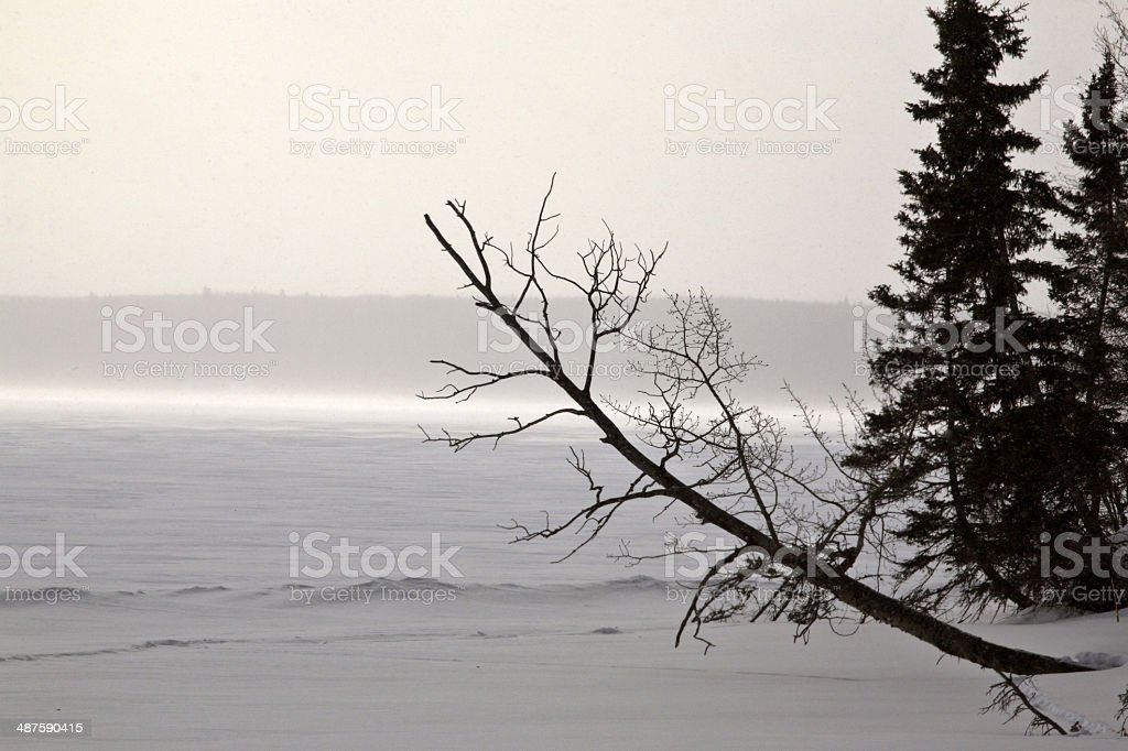 Blowing snow over frozen Waskesui Lake stock photo