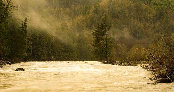 trattati fiume - snoqualmie foto e immagini stock