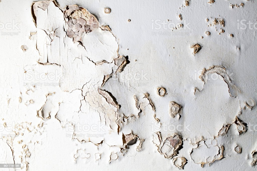 Blown plaster. Damp salt damaged wall surface in need of repair. stock photo