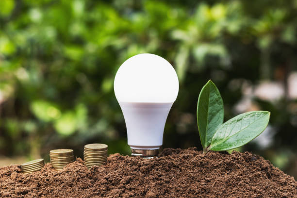 led blub with green leaf and money on dirt. concept saving energy power - światło led zdjęcia i obrazy z banku zdjęć