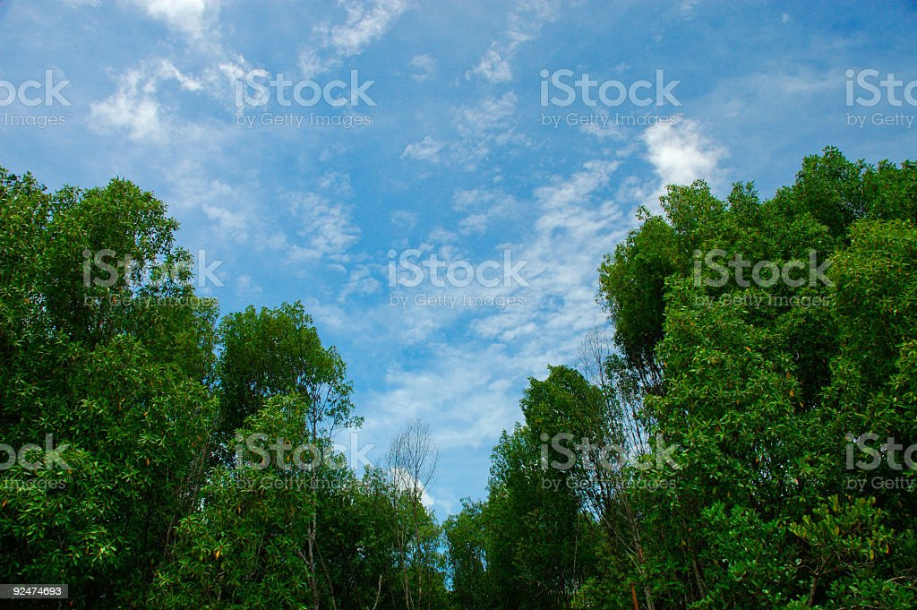 blue and green royalty-free stock photo