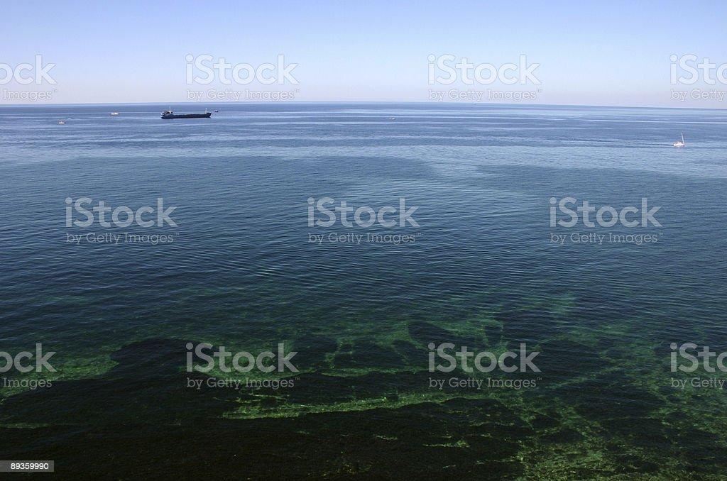 Blue and green sea royaltyfri bildbanksbilder