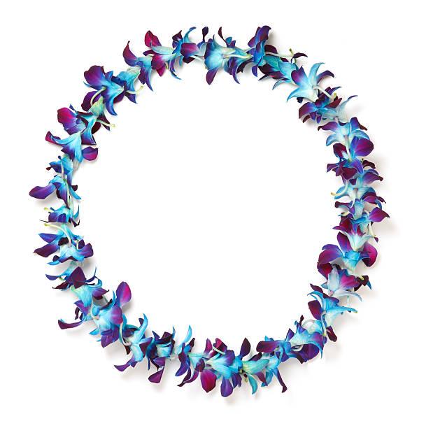 blue and purple hawaiian lei stock photo