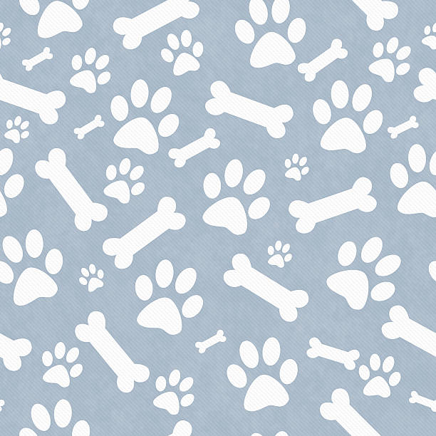 Blue and white dog paw prints and bones pattern background picture id488511552?b=1&k=6&m=488511552&s=612x612&w=0&h=wnvzgoyvpoenvlfimnhpadcbtifa0zjfiyfhzkzq ty=