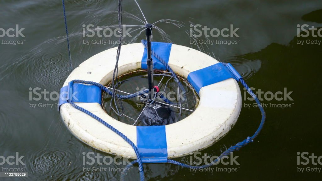A blue and white life bouy on the sea stock photo