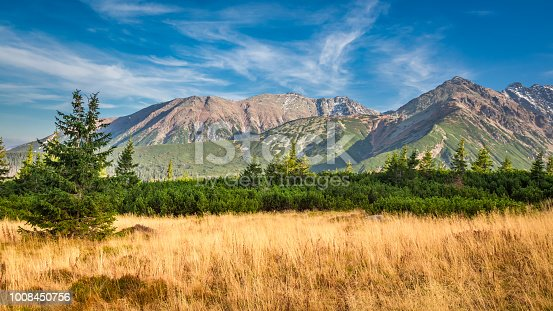870409146 istock photo Blue and yellow view in the Tatra Mountains in autumn 1008450756