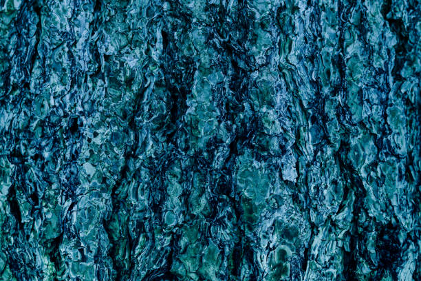 Blue aquamarine organic texture and backgroung, bark surface in retro style stock photo