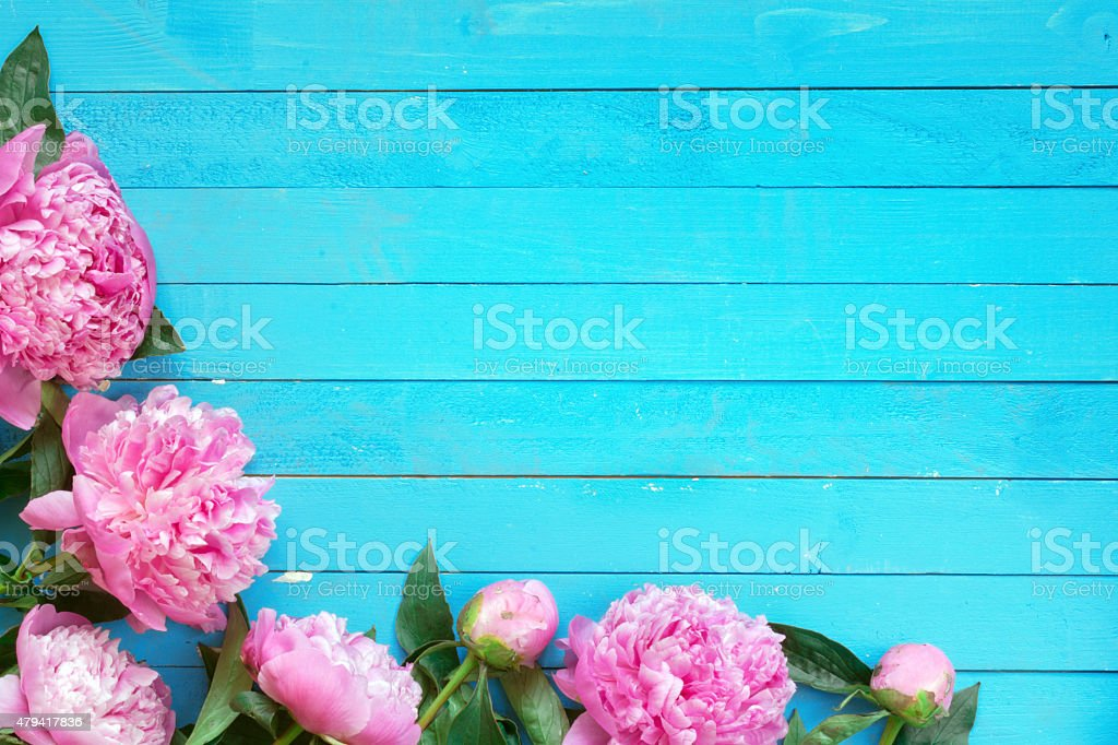 Blue background with flowers stock photo