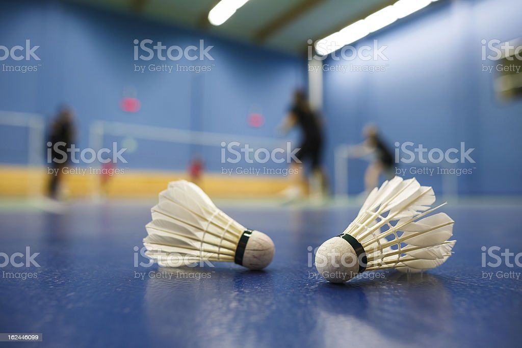 Blue badminton court and shuttlecocks with players competing stock photo