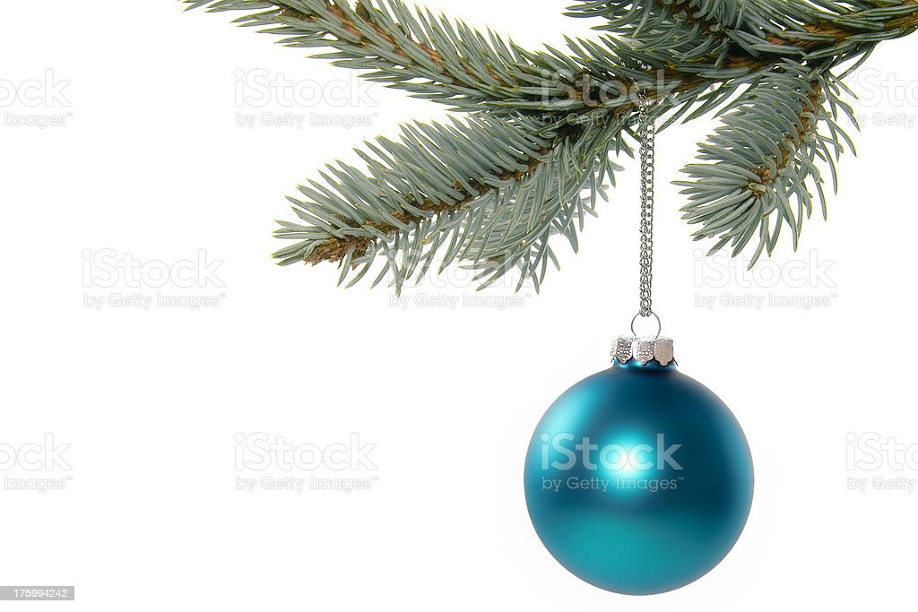 Blue Ball on Spruce royalty-free stock photo