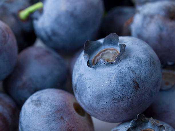 blue berries - xxmmxx stock photos and pictures