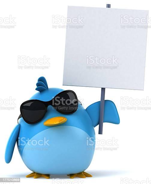 Blue bird picture id177010869?b=1&k=6&m=177010869&s=612x612&h=a45jxucop05 6emr ry td1wmjz4xnlssj9bilvspte=