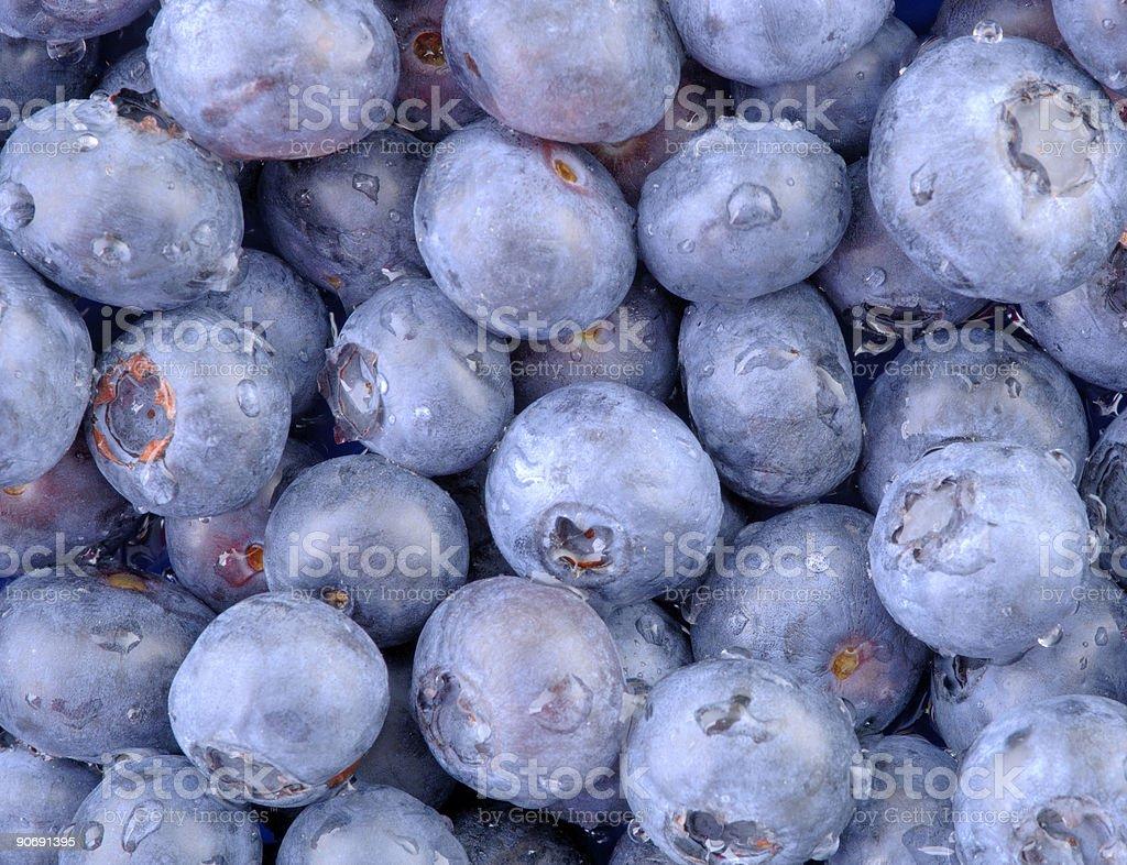 Blue Blueberries-Horizontal royalty-free stock photo