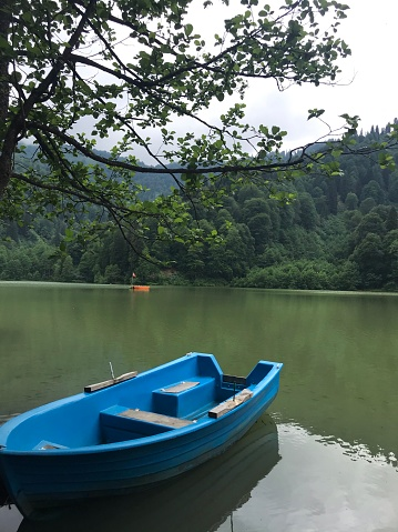 Blue boat on the lake. surrounded by trees.