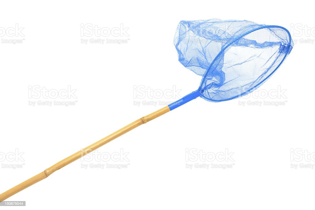 blue butterfly net stock photo