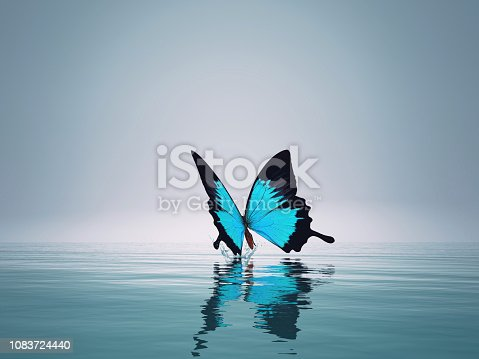 A blue butterfly on sea. This is a 3d render illustration