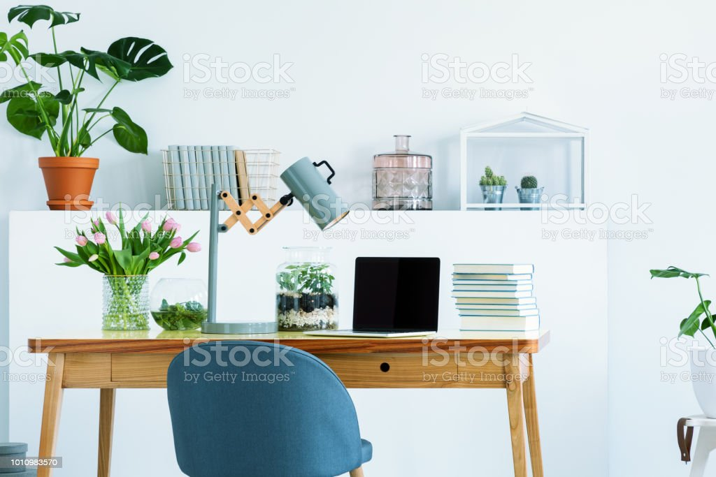 Blue chair at wooden desk with books, laptop and lamp in white study area with flowers. Real photo