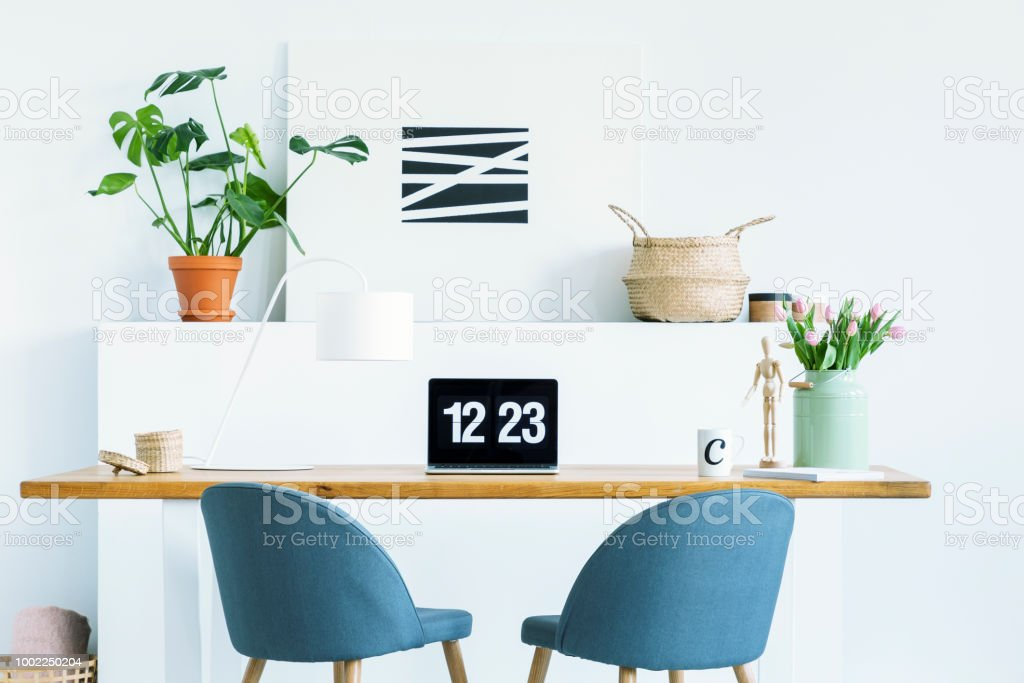 Blue chairs at wooden desk with laptop in white work area with plant and poster. Real photo