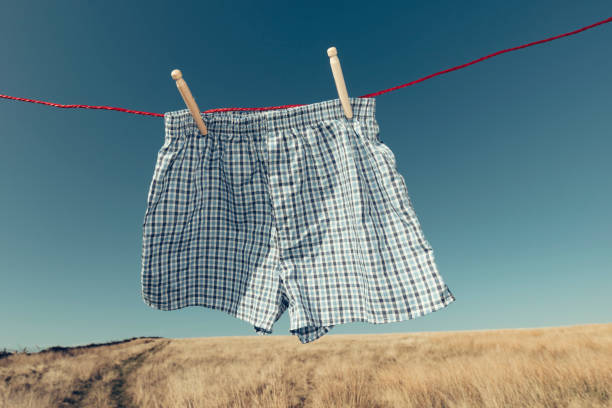 blue checked boxer shorts on a washing line, rural setting. - washing line stock pictures, royalty-free photos & images