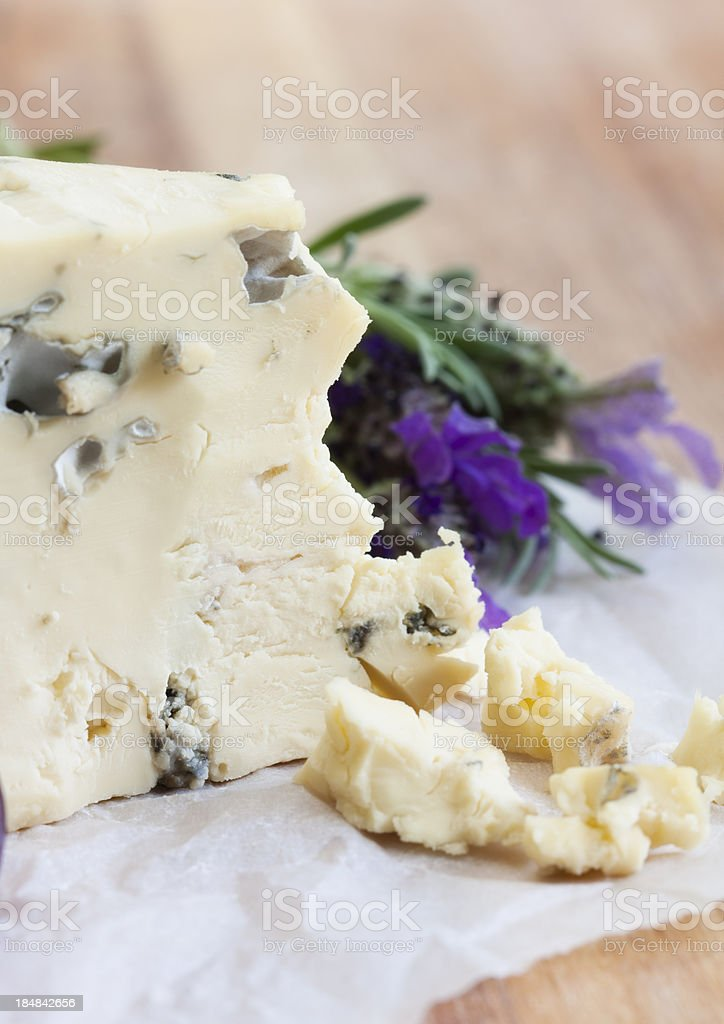 Blue cheese and lavender stock photo