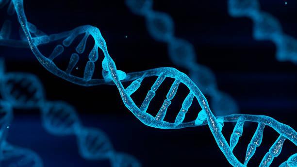 il dna del cromosoma blu e la luce dello sfarfallio gradualmente incandescente sono chimici quando la fotocamera si muove da vicino. concetto di salute genetica medica ed heredity. scienza tecnologica. rendering illustrazione 3d - dna foto e immagini stock
