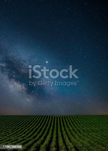 The Milky way over the vineyards.