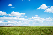 Blue cloudy sky and field