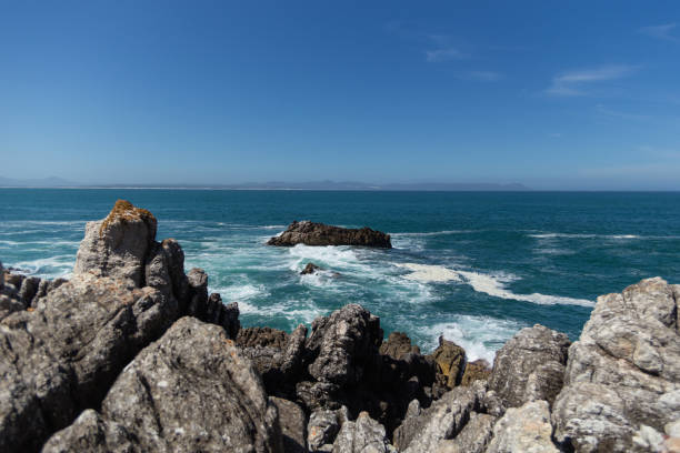 blue coast in hermanus cape town - rocky coastline stock pictures, royalty-free photos & images