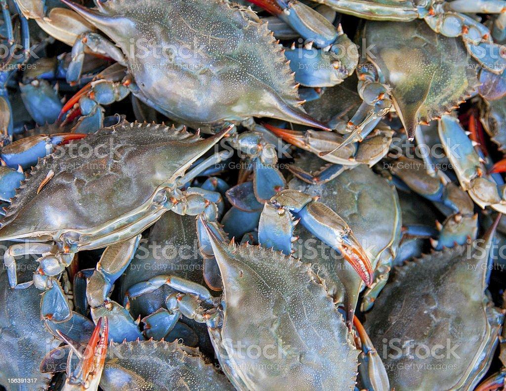 Blue Crabs for Sale - Arthur Avenue stock photo