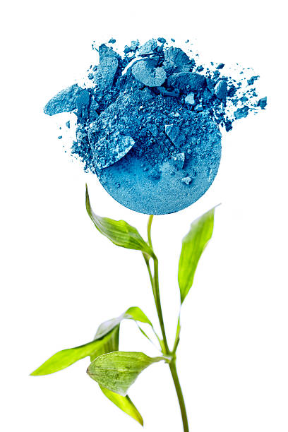 Blue Crushed Makeup Flower stock photo