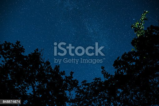 809971888istockphoto Blue dark night sky with many stars above field of trees. 848874674