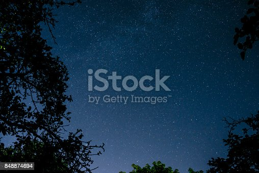 809971888istockphoto Blue dark night sky with many stars above field of trees. 848874694