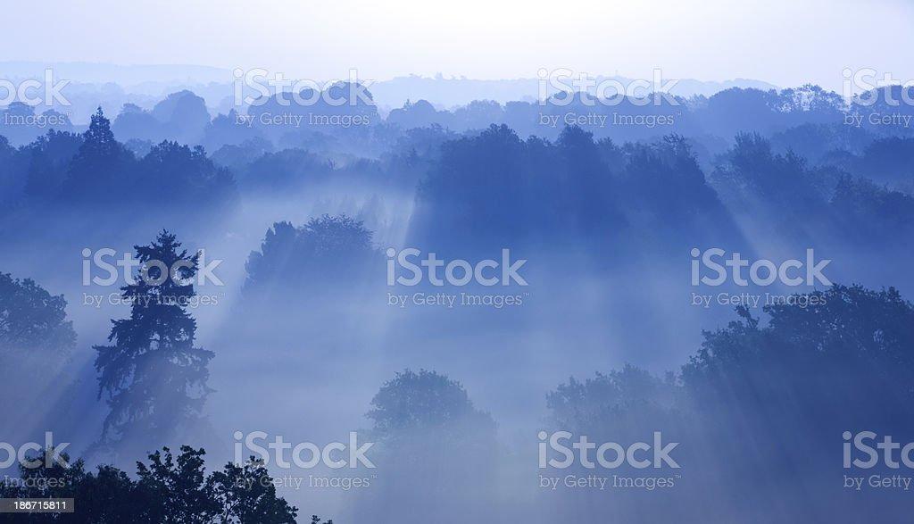 Blue Dawn royalty-free stock photo